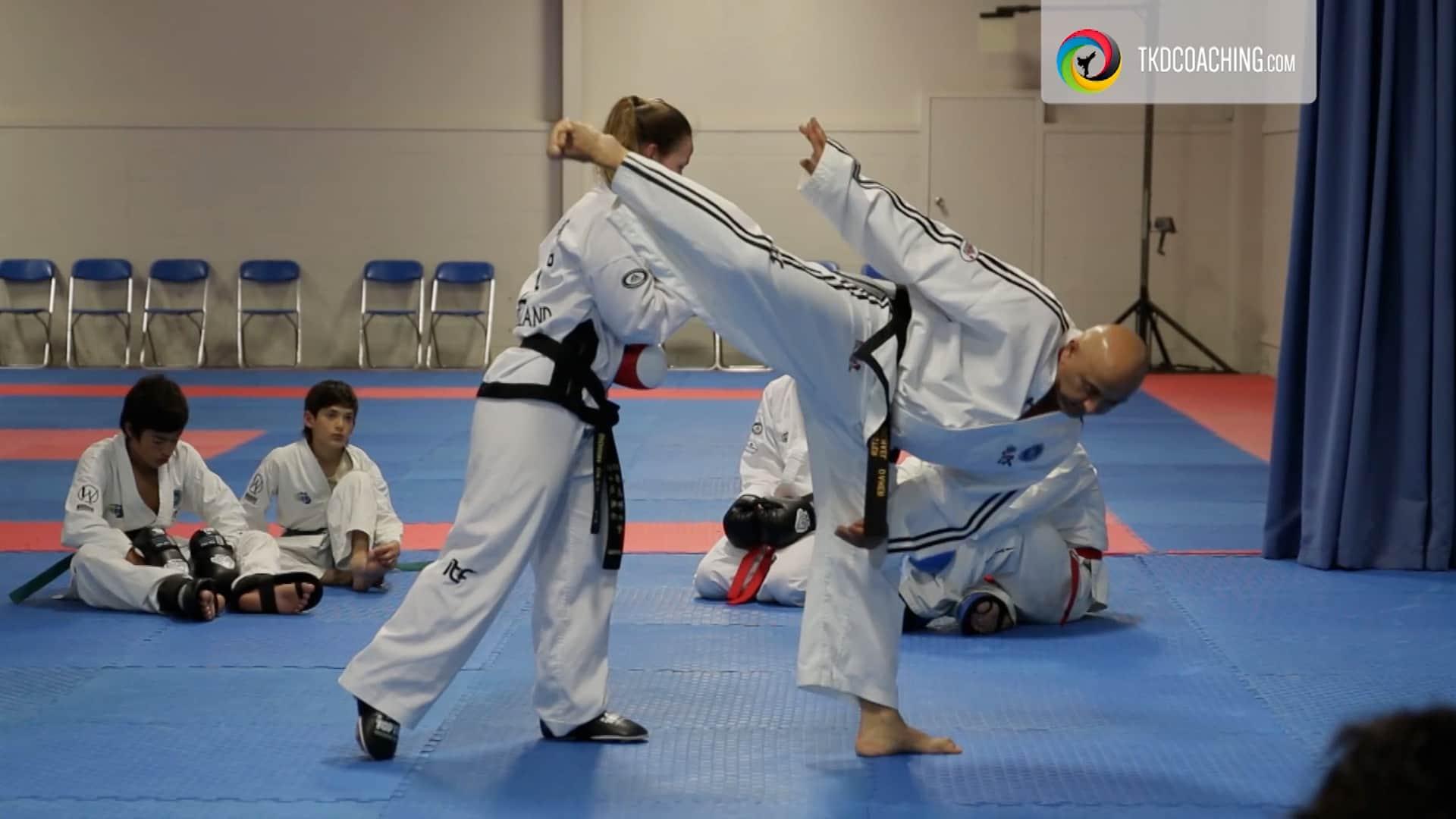 Master Daher Kicking Class