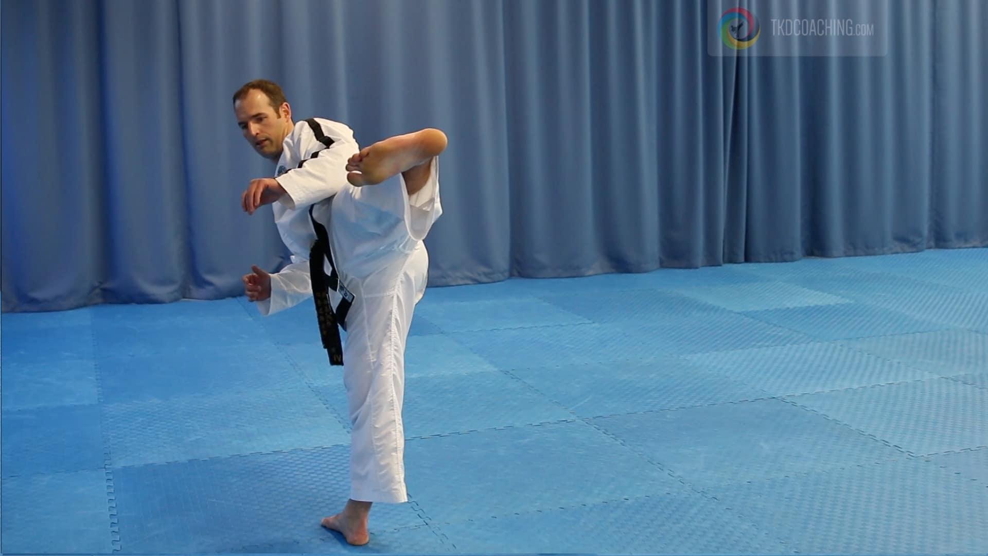 Master Gray Patterson Side Kick