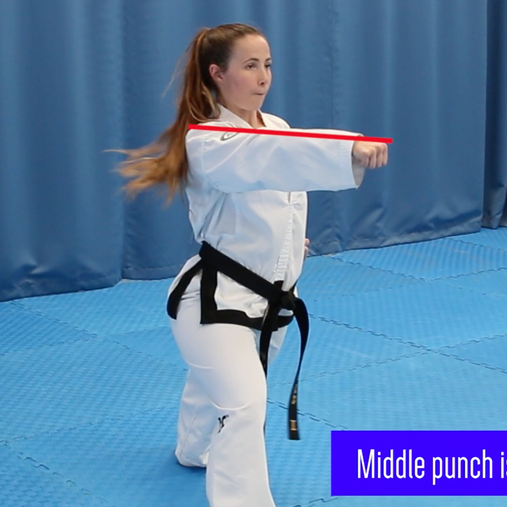 4-direction-punch and block